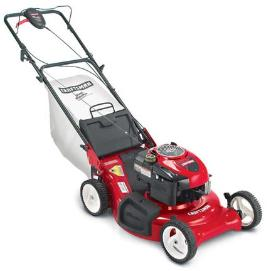 craftsman 22 inch rear self propelled lawn mower
