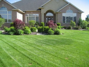 Lawn Care Business Insurance