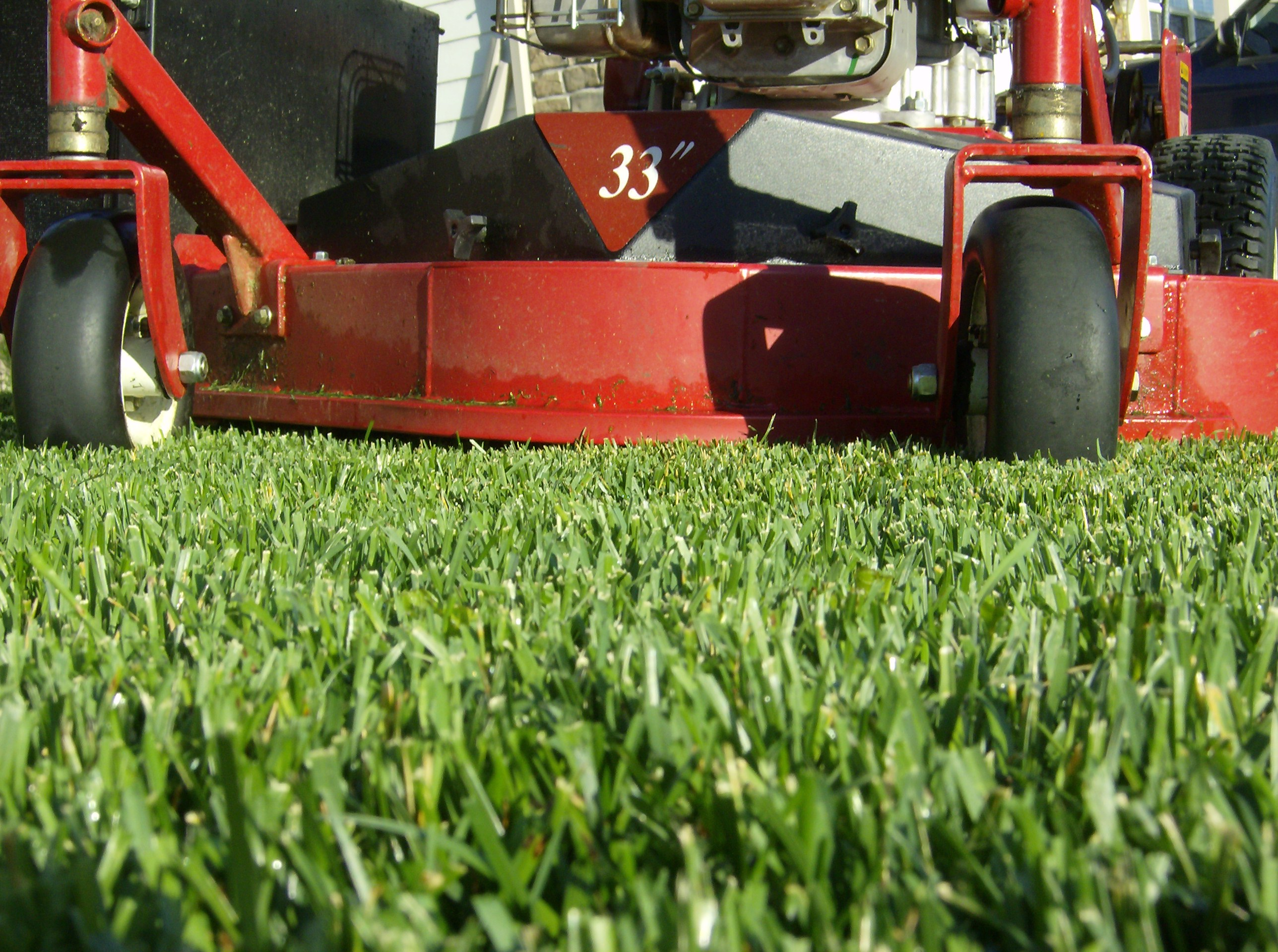 Lawn mowers blog archive how much is lawn care service for Garden service