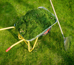 Mulch your Grass Clippings
