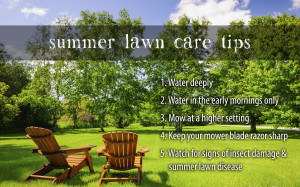 Lawn Care Tips Year Round