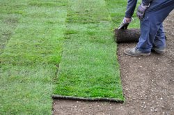 How to Install a Sod Lawn