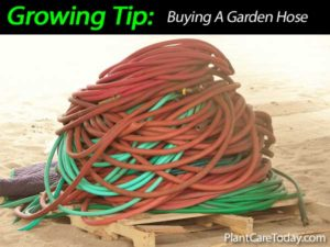 garden hose buying tips