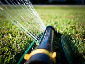 watering efficiently new lawns