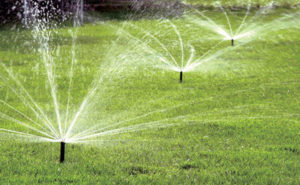 Design rules for an underground sprinkler system