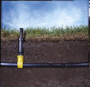 underground Sprinkler Installation and testing